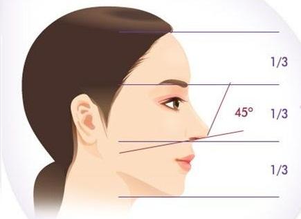 Hình dạng mũi hếch